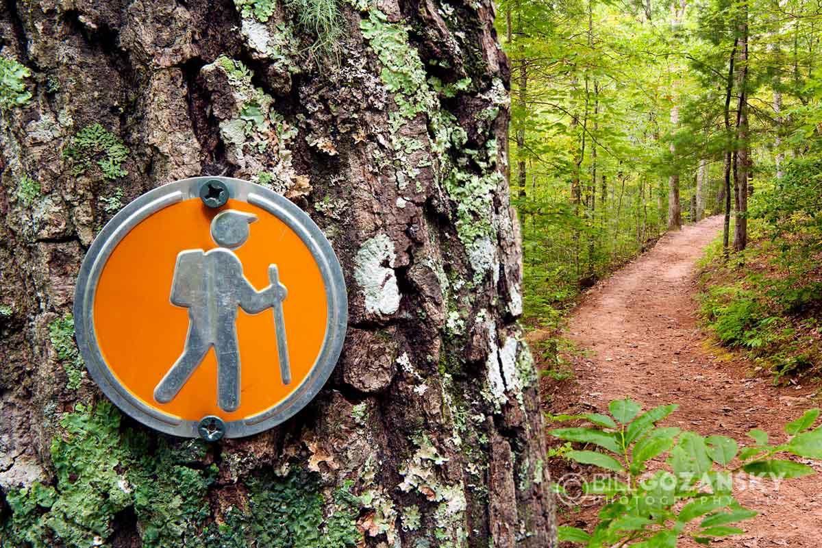 Trail Marker at North Carolina Arboretum - Asheville, North Carolina USA