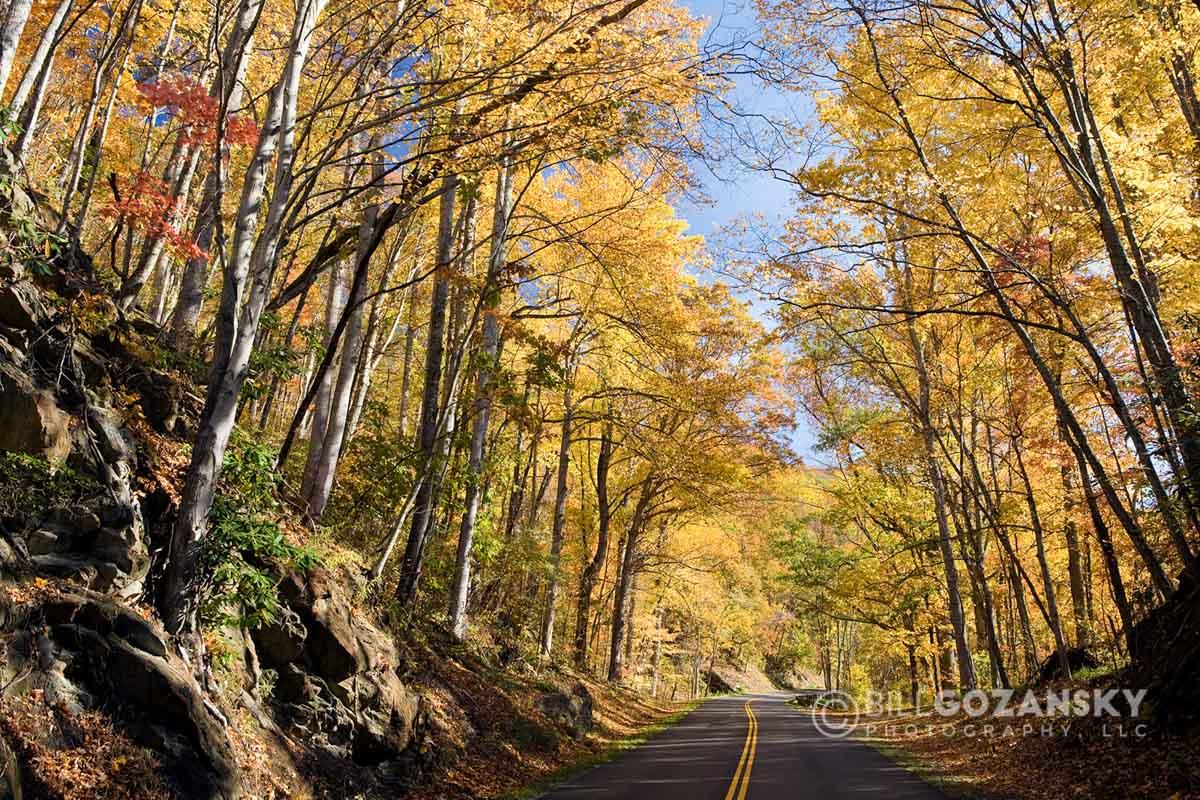 Blue Ridge Parkway - Asheville, North Carolina, USA