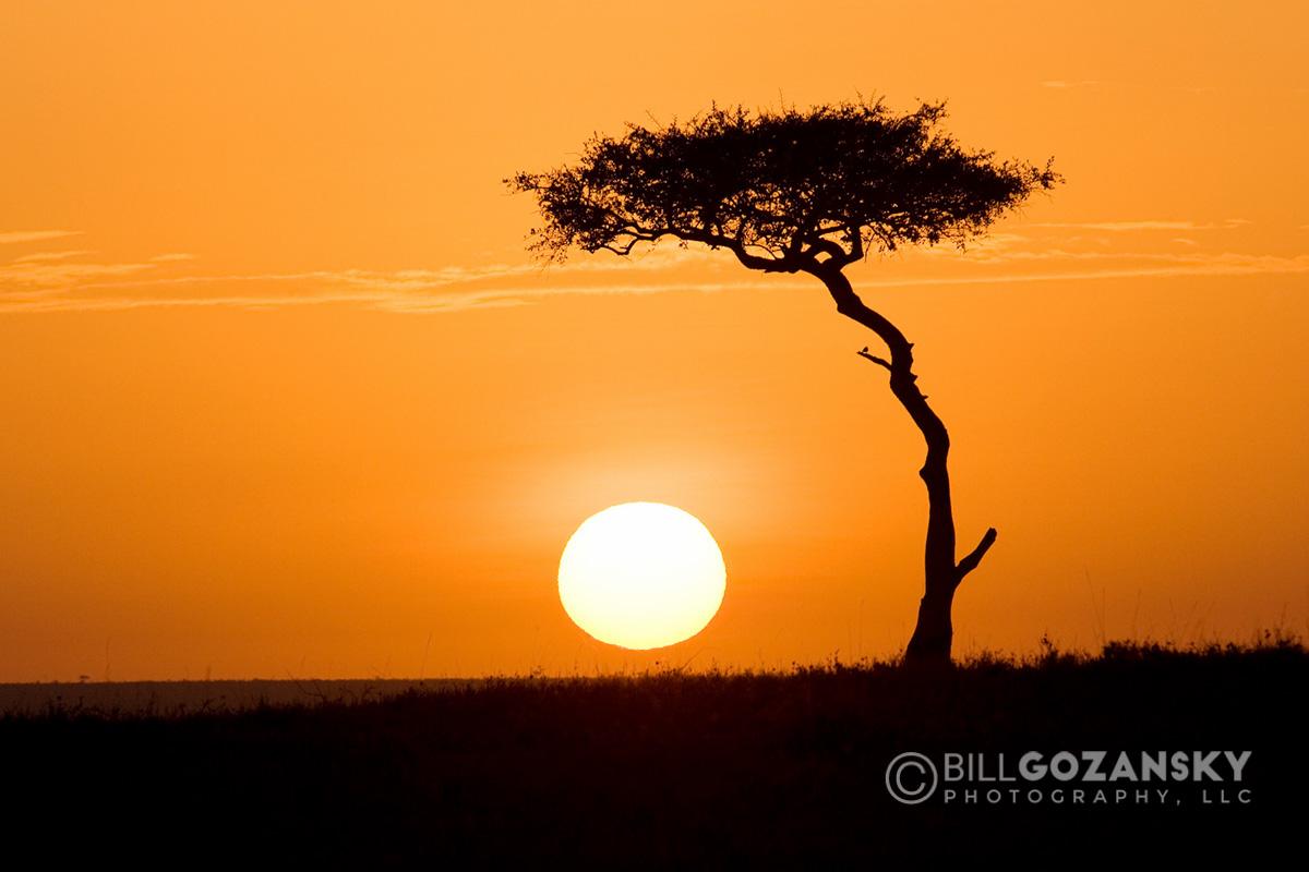 Sunrise in Masai Mara National Reserve, Kenya, Africa