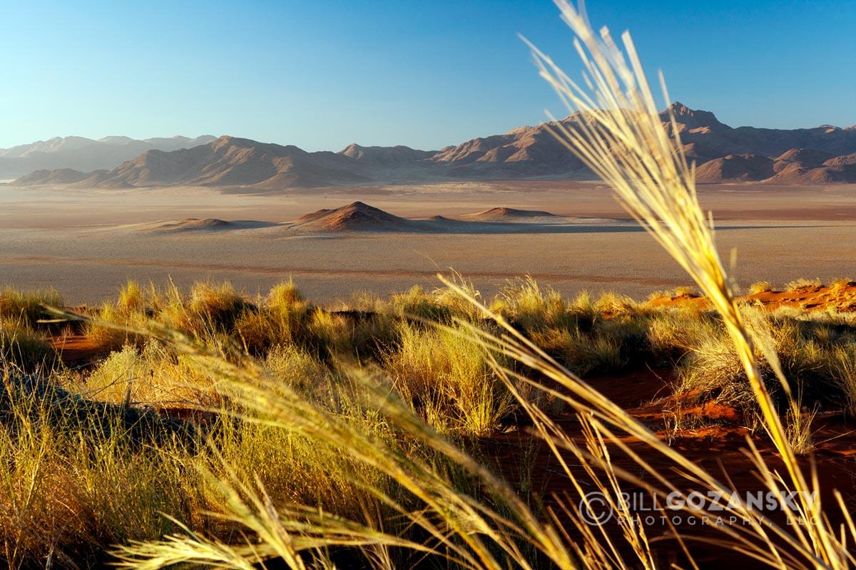 Wolwedans Landscape – NamibRand Nature Reserve – Hardap Region, Namibia, Africa