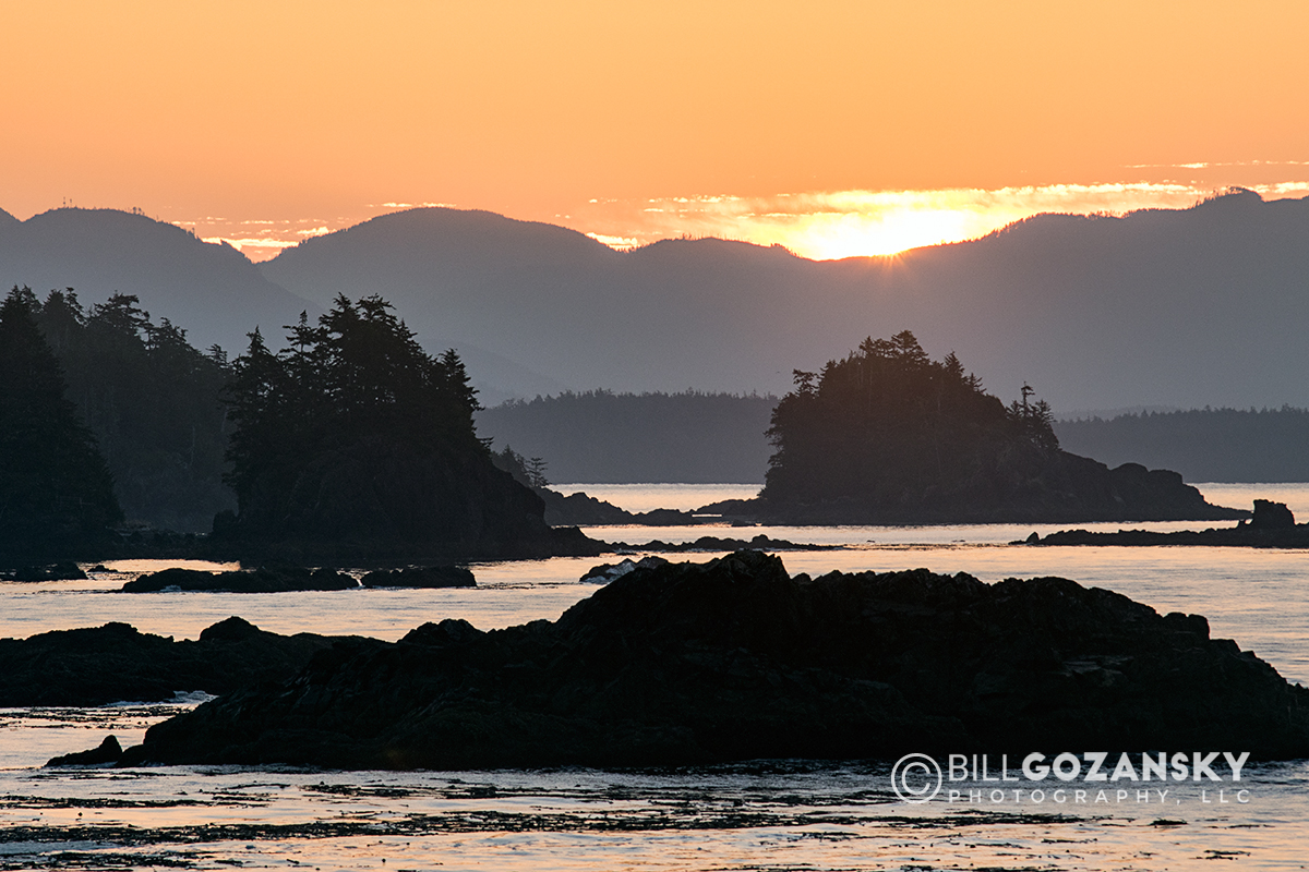 Sunrise on Wild Pacific Trail, Ucluelet, Vancouver Island, British Columbia, Canada