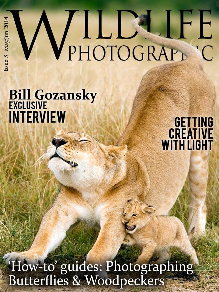 Wildlife Photographic Issue 5 Cover