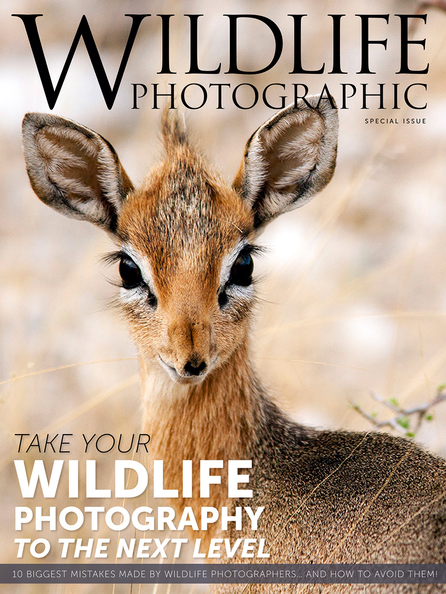 Wildlife Photographic Special Issue Cover