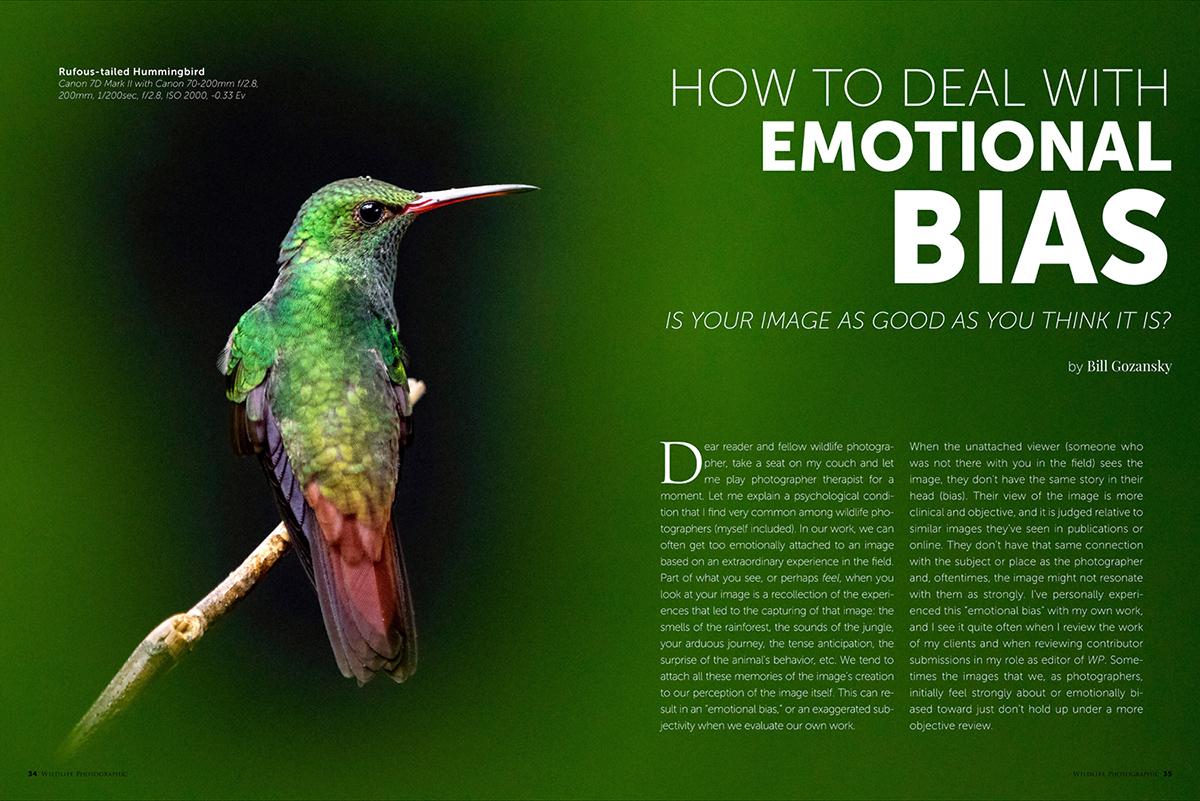 Wildlife Photographic Issue 24