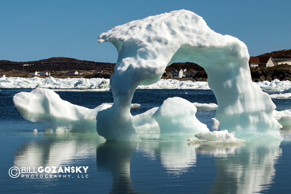 Icebergs in Twillingate Harbour - Twillingate, Newfoundland, Canada